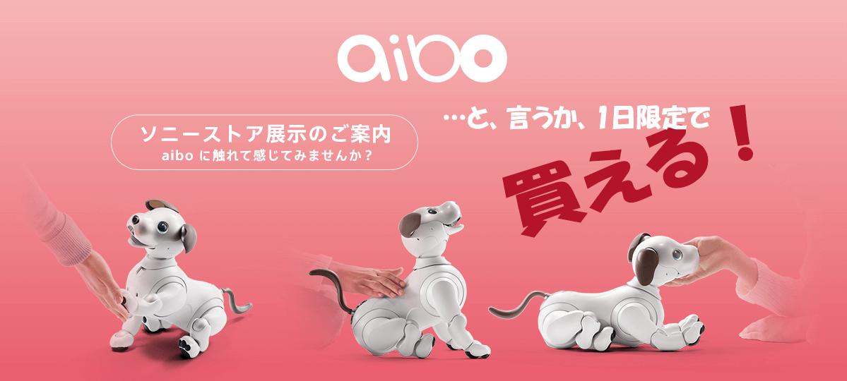 aibo(アイボ)が1日限定で、SONY SOTREで買える!
