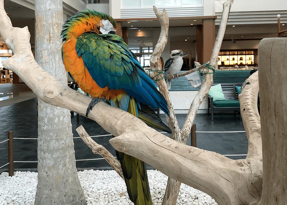 ルネッサンスリゾート沖縄