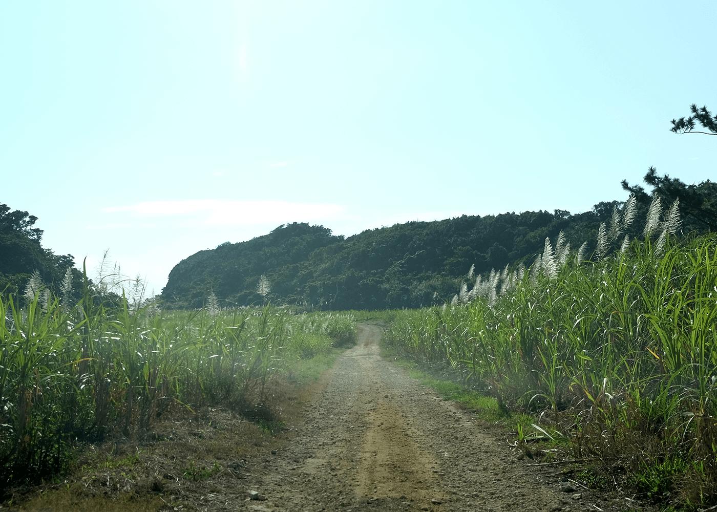 宮城島 果報バンダとぬちまーす観光製塩ファクトリー