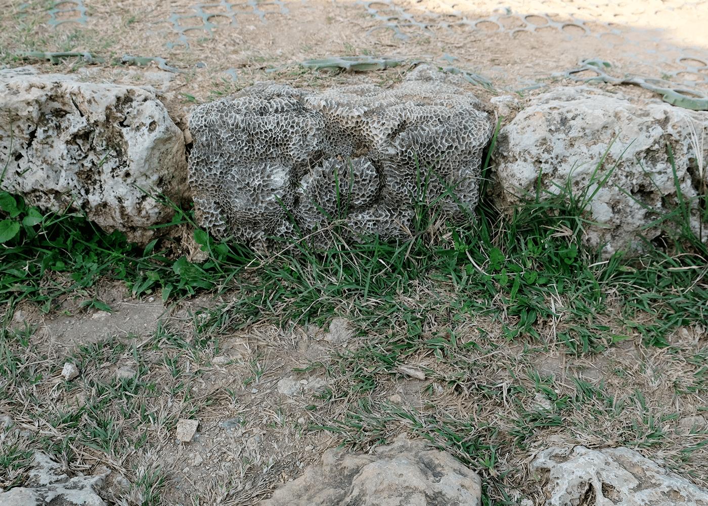 勝連城跡(かつれんじょう/かつれんぐすく)
