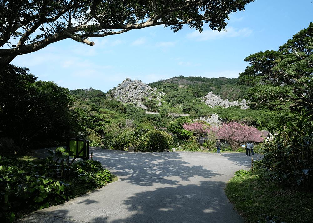 大石林山(せきりんざん)