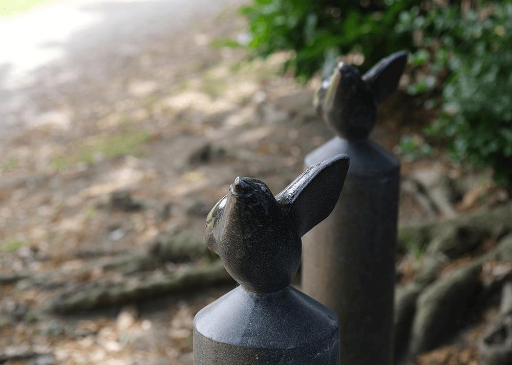 谷津干潟公園&遊歩道(やつひがたこうえん&ゆうほどう)