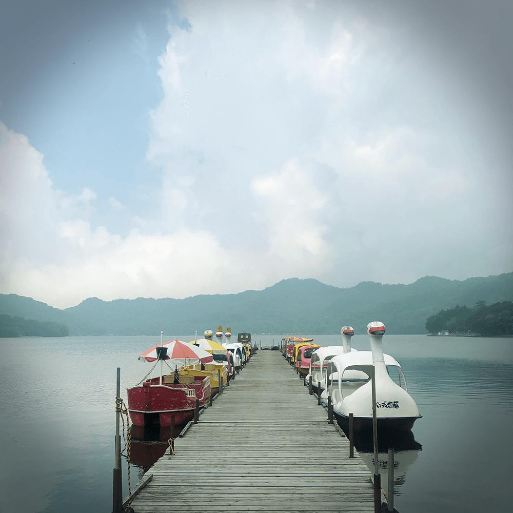 大沼の白鳥ボート